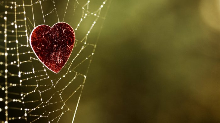 Heart-Of-The-Spider-Wallpaper-1080p